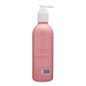 beauty dust hydrate conditioner