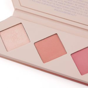 aether cheek palette rose blush highlighter